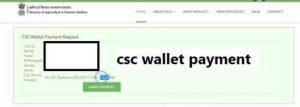 csc wallet payment