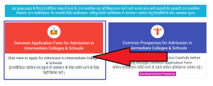 Common Application Form for Admission in Intermediate Colleges and Schools